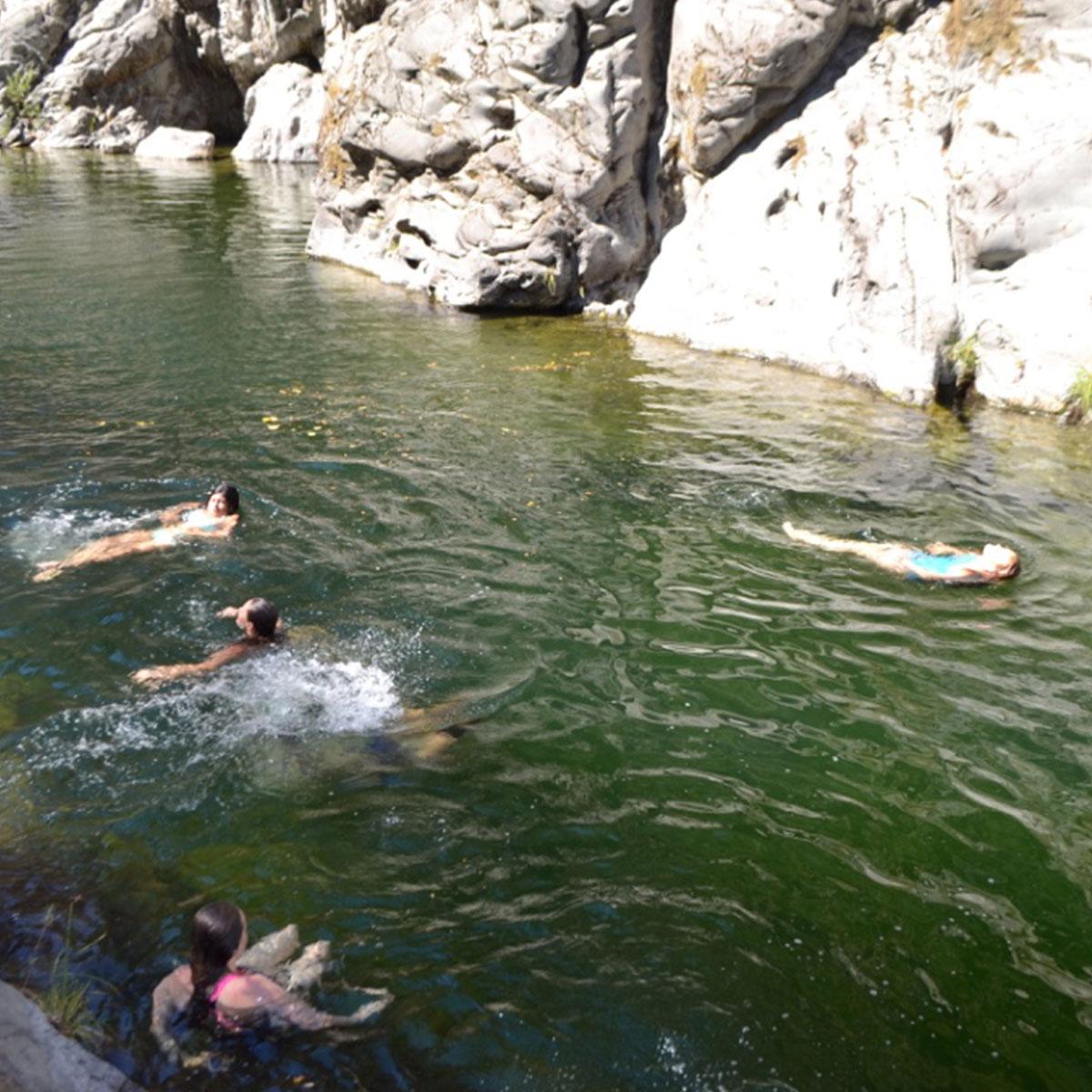 swimming-at-drippy